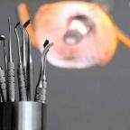 Терапия каналов зубов плотоядных – миф или реальность?