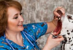 Переломы зубов: лечить или нет?